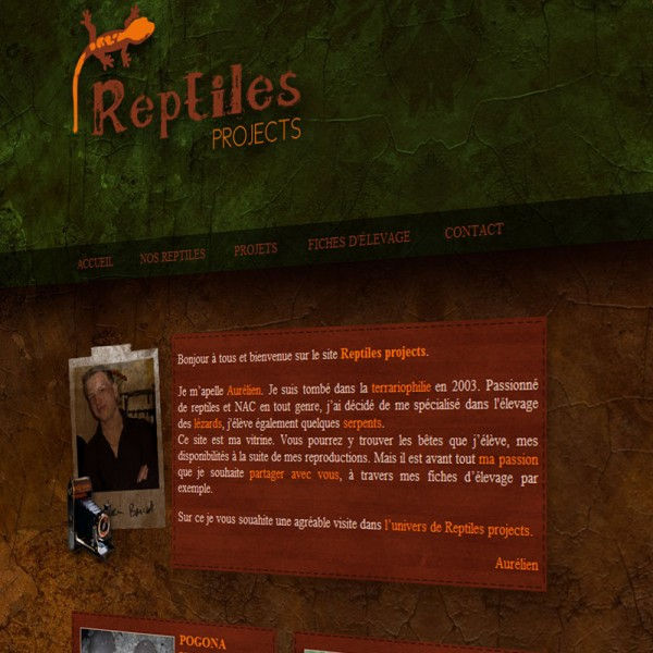 Reptiles Projects